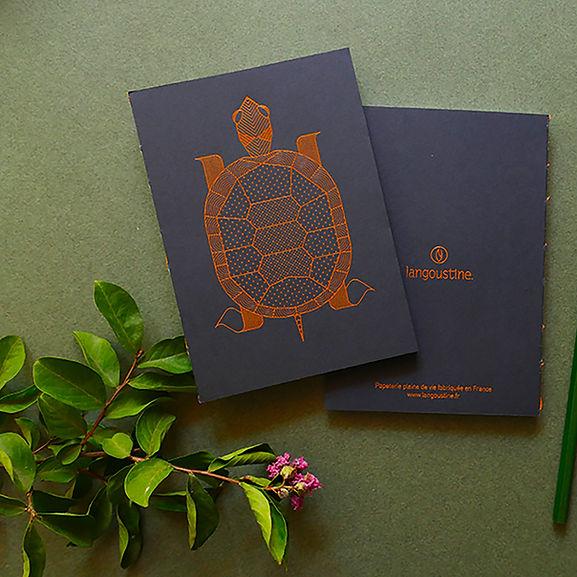 carnet illustration tortue