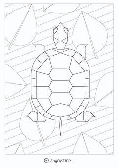 coloriage langoustine tortue