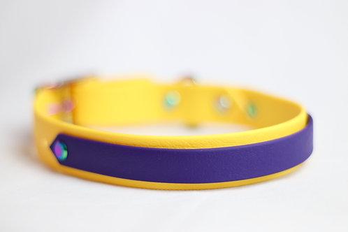 Spyro Striped Collar