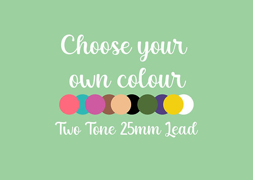 25mm Two Tone Lead (multiple colours)