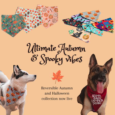 Ultimate Autumn & Spooky vibes.png