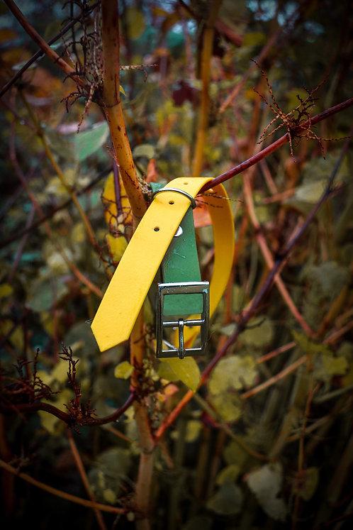 Lemon Lime Two Toned Collar