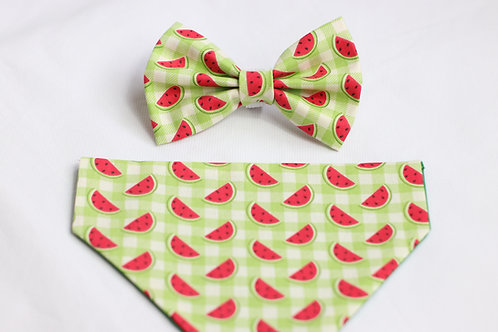 Watermelon Sugar Bow