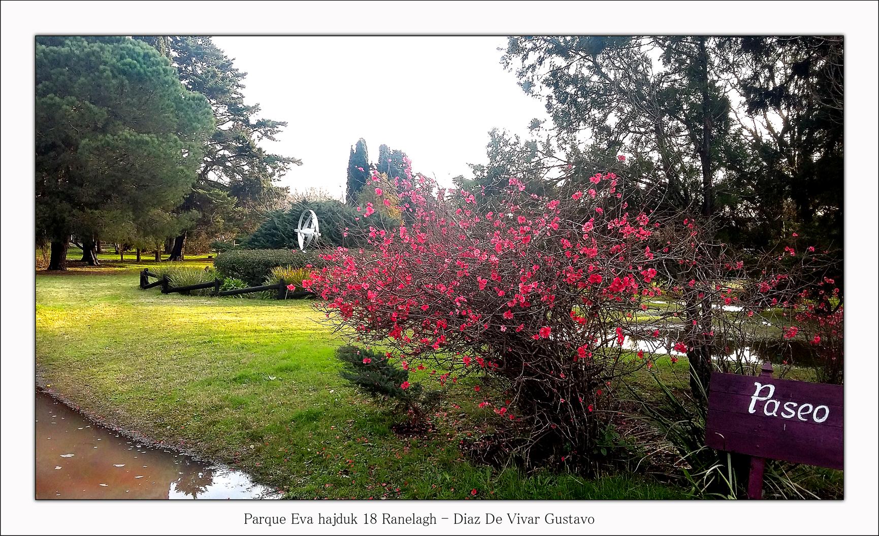 Parque Eva hajduk 18 Ranelagh  - Diaz De Vivar Gustavo