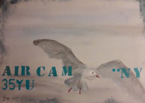Air cam.jpg