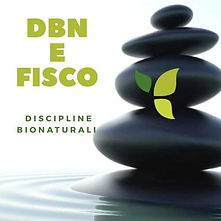 dbn fisco logo.jpeg