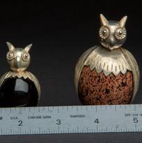 OWLS 5.jpg