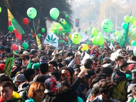 ¿Quién decide sobre la legalización de la marihuana?