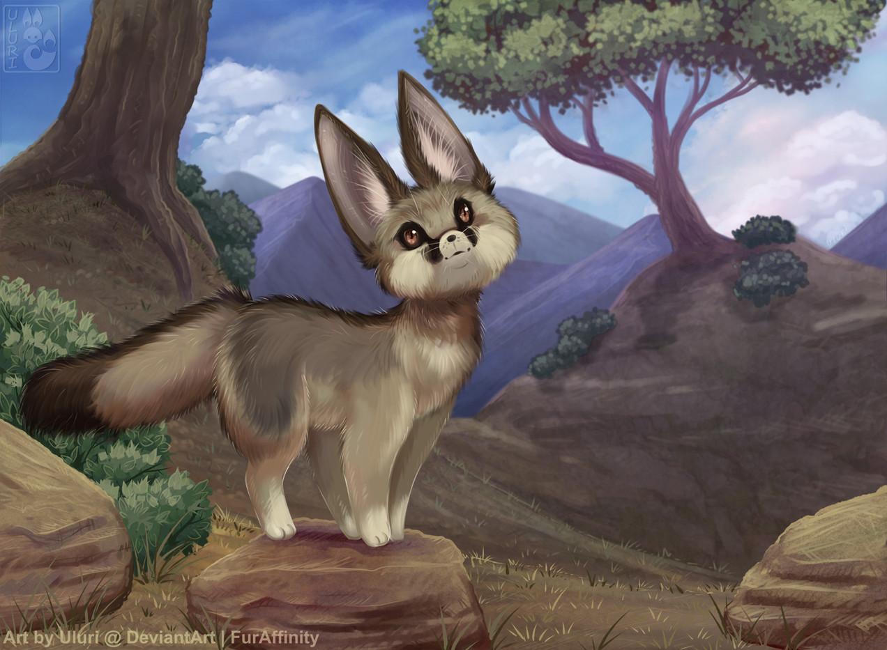 Blandford Fox Uluri