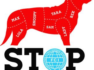 Atroces violations du droit de l'animal commises au festival annuel de Yulin en Chine
