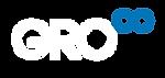 GROOO-Logo-B copy 4@1.5x-80-3.png