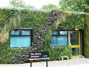 Green walls protect buildings