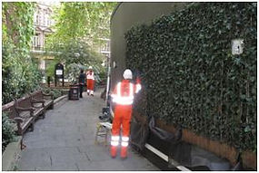 Ivy screens in Finsbury Circus