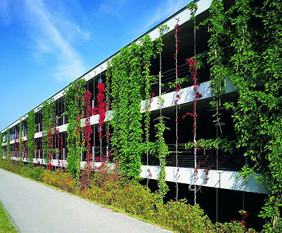 Green wall types - climbing facades