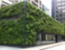 Green wall installation in London