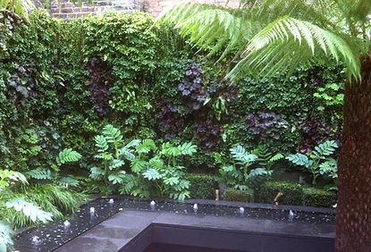irrigation systems for green walls