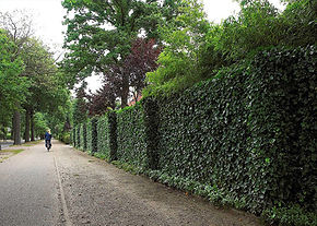 Greens screens improve biodiversity