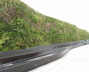 Living modular green wall at Westfield