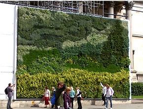 Green wall improves aesthetics
