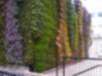 TfL Green Wall at Edgware Road