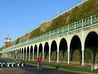 Madeira Drive green climbing facade