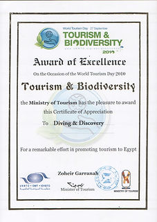 NATIONAL AWARD of EXCELLENCE 2010  (Engl