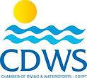 Copia di CDWS official logo.jpg
