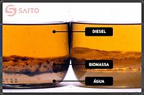 agua-biomassa-diesel.png