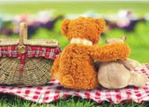 What to Have at the Teddy Bears' Picnic?