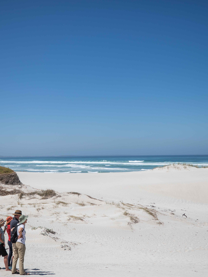 Beach excursion to Walker Bay