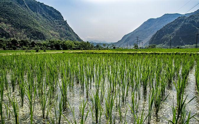 Vietnam-9620.jpg