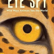 Book Jacket: Eye Spy: Wild Ways Animals See the World