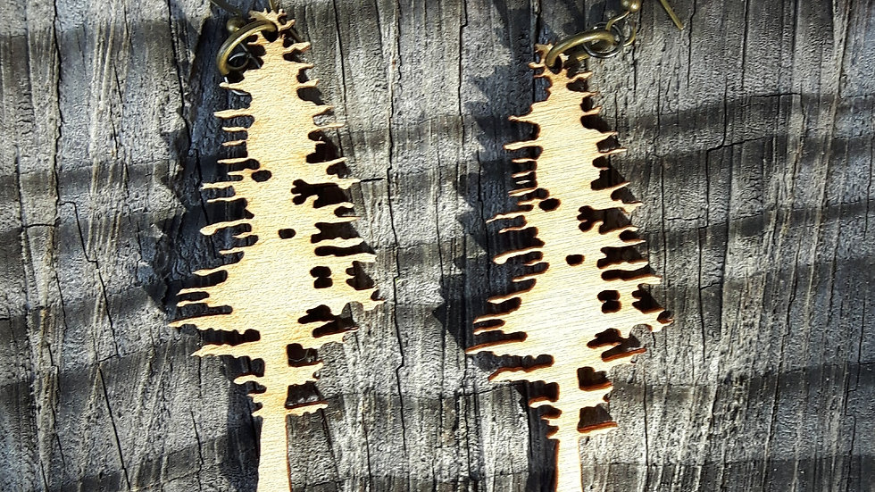 Sitka Spruce Earrings