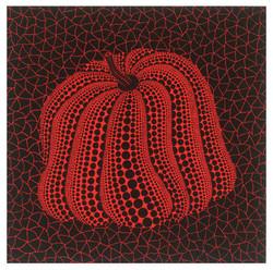 《南瓜 | KY242 Pumpkin(RSQ)》