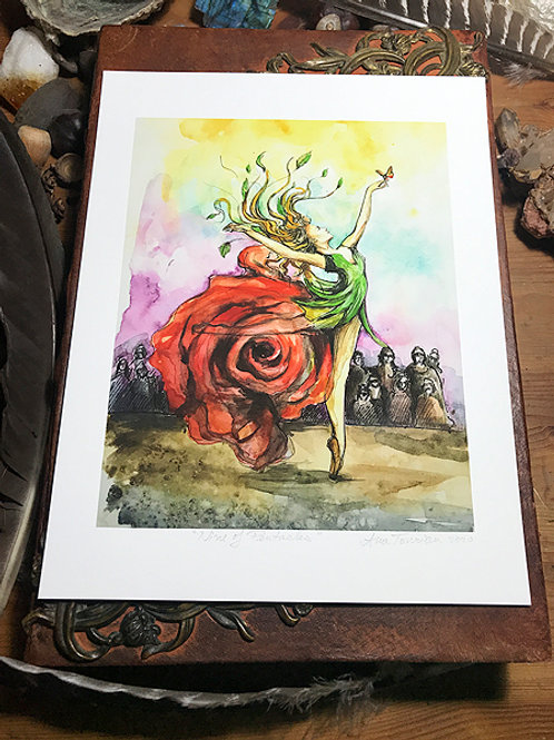 Nine of Pentacles—Signed 8.5 X 11 Fine Art Giclee photographic print
