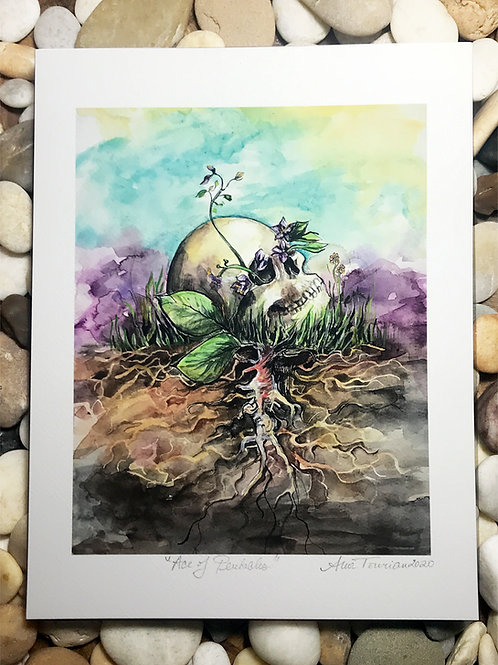 Ace of Pentacles—Signed 8.5 X 11 Fine Art Giclee photographic print
