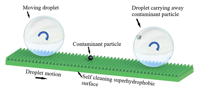 Schematic of a superhydrophobic surface