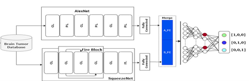 The Hybrid model using AlexNet and Squee