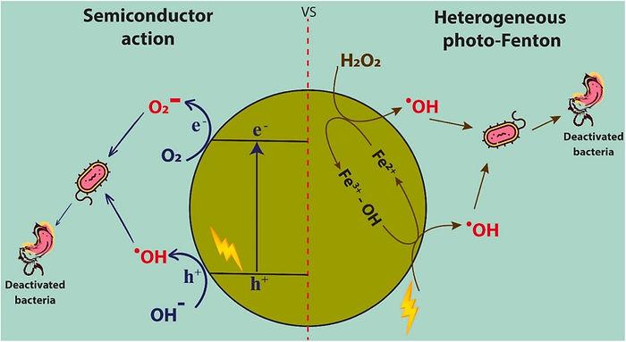 Figure 1. Schematic illustration depicti