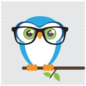 Test prep owl