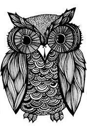 Test PrepTutoring Owl