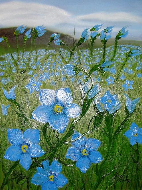 Field Of Blue Flax Flowers #8