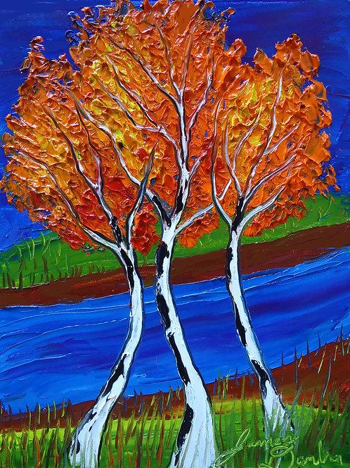 Birch trees Of Autumn #21
