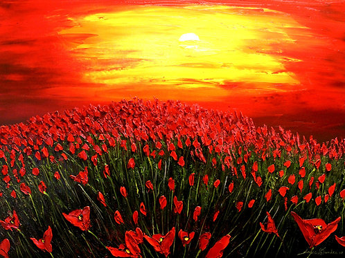 Field Of Red Poppies #10
