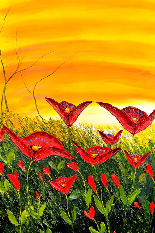 Sunburst Red Poppies