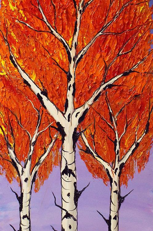 Birch Tree's Of Autumn #27