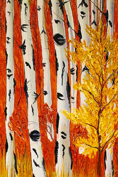 Birch trees Of Autumn #26