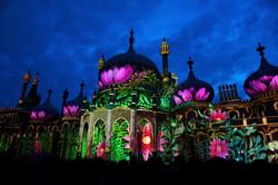 Royal Pavilion Lotus Final