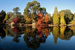 Autumnal colour & reflections
