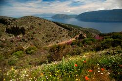 Kefalonia spring hills copy
